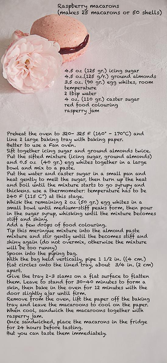 Recipe Macarons web
