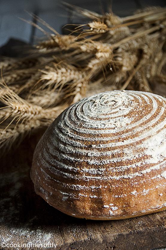 Pane di semola 2