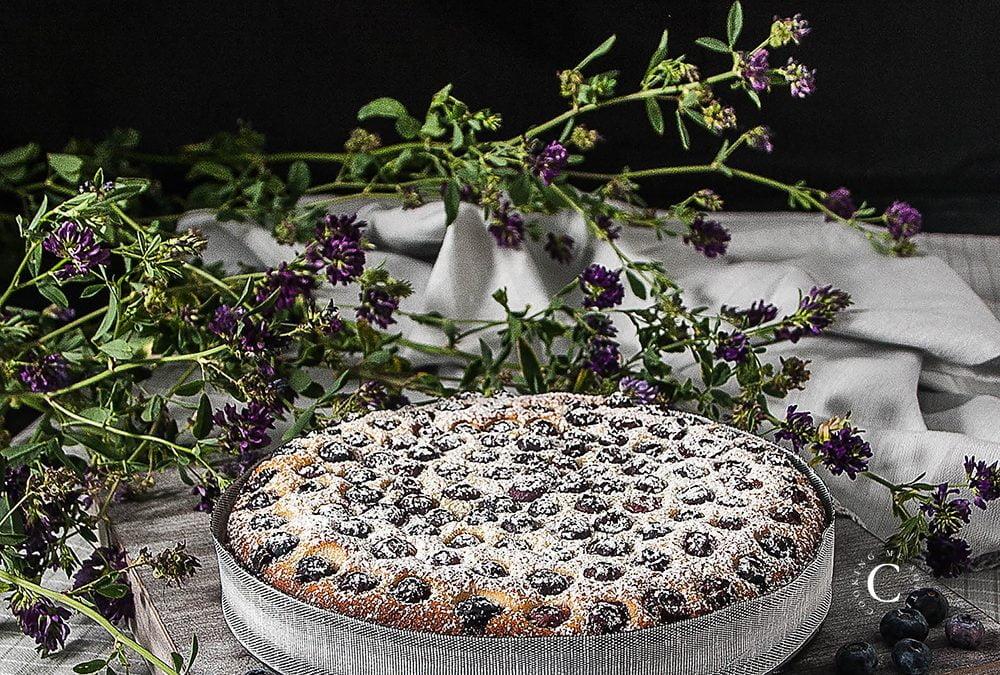 Blueberries soft cake