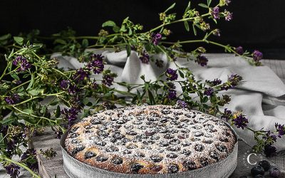 Blueberries soft cake